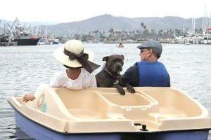 Paddle_Boat