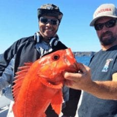 Ventura Harbor Sportfishing