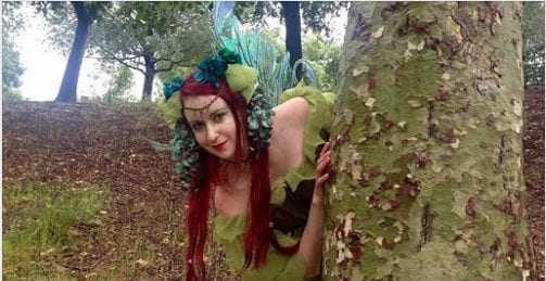 Fairy meet and greet