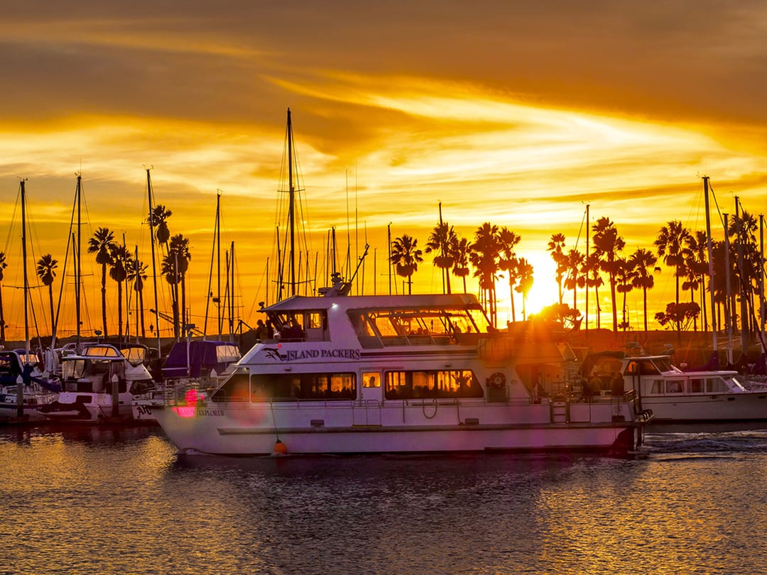 Special Saturday Evening Harbor Dinner Cruise with Island Packers