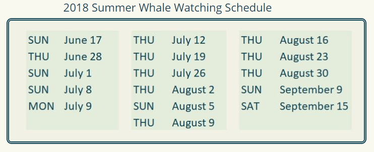 dates of whale watching