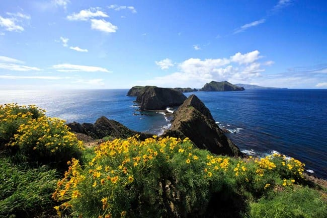 beautiful landscape imagery of the Channel Islands lined up with the deep blue ocean surrounding it and the sun shining