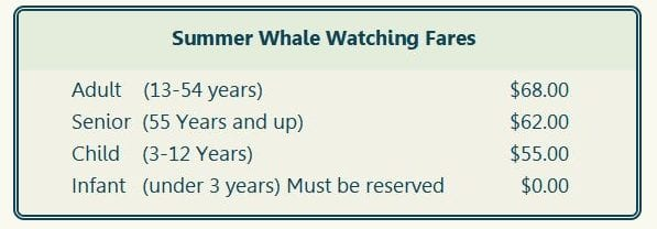 prices for different ages to go whale watching