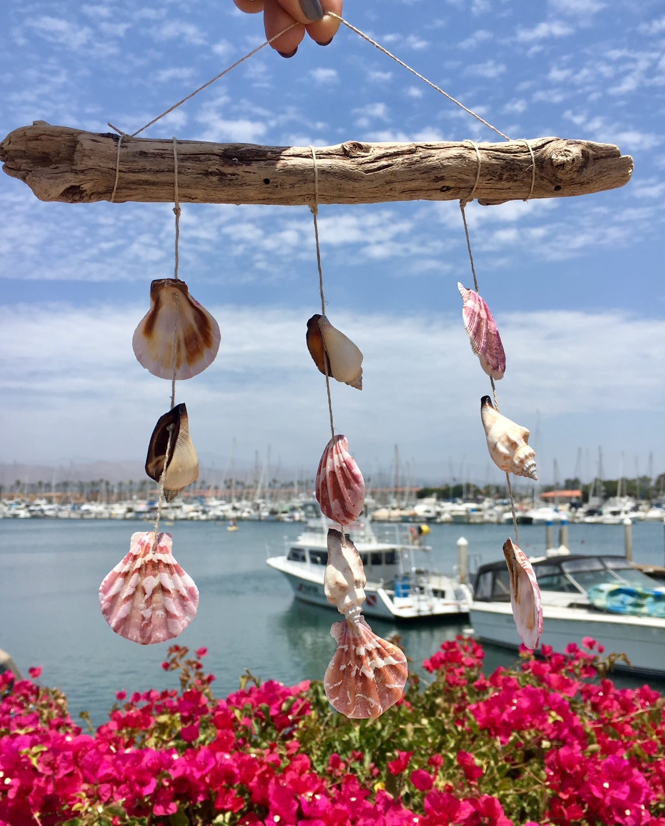 shell mobile hanging in front of water