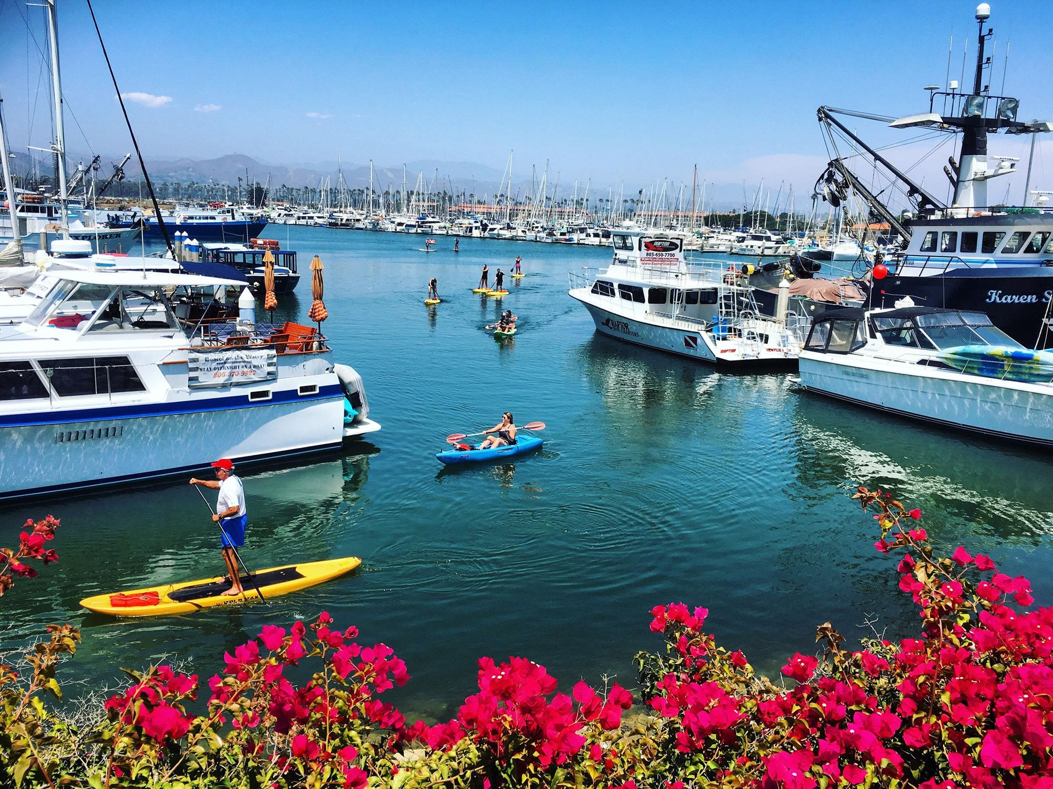 harbor on a sunny day with people on kayaks and paddle boards