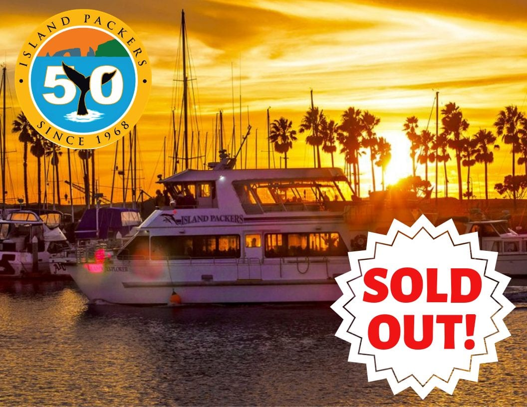 sold out harbor dinner cruise