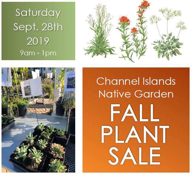 native plant sale