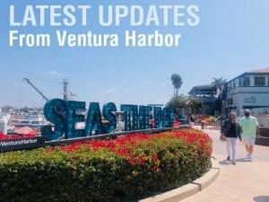 harbor updates