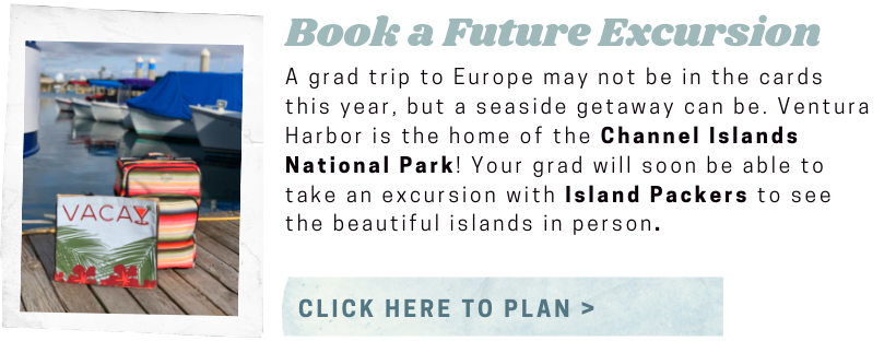 Island Packers vacation excursion