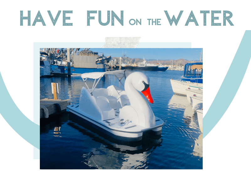 have fun on the water