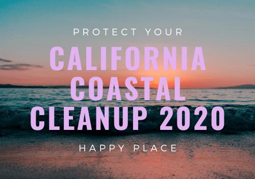 ca clean up