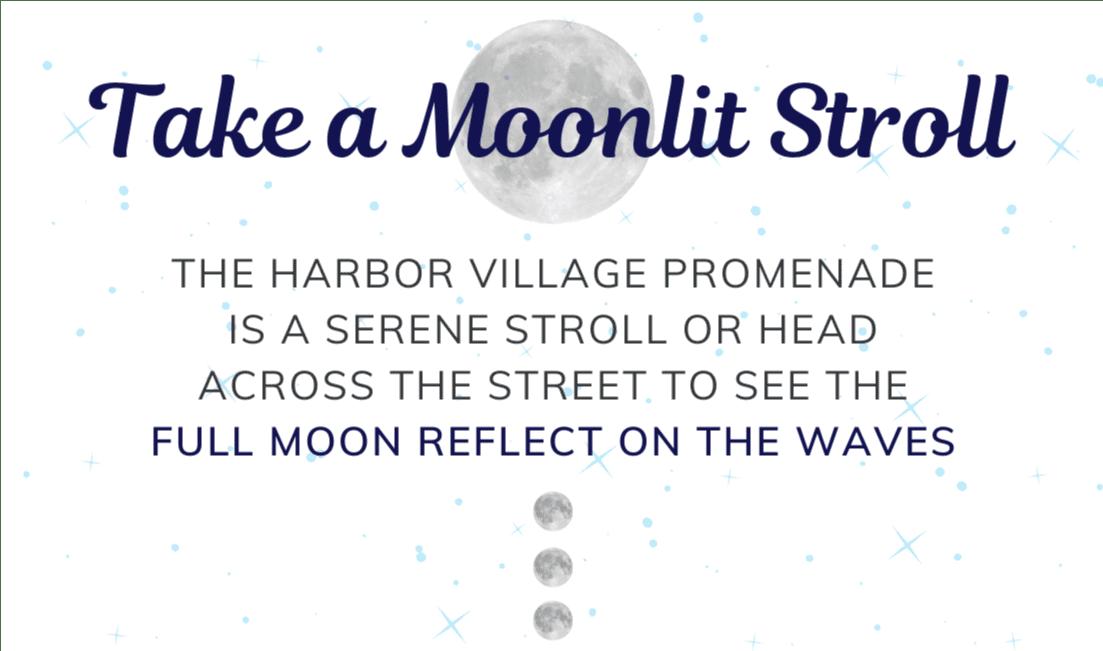 take a moonlit stroll