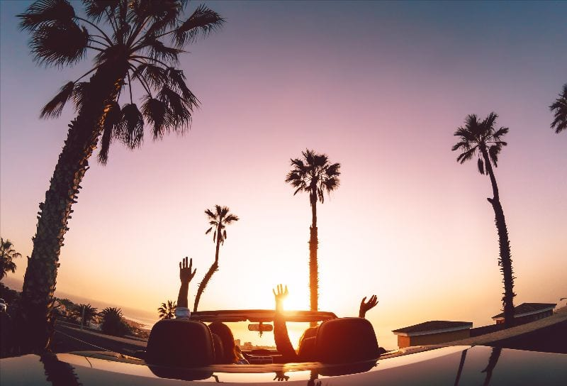 sunset with a car driving surrounded by palm trees