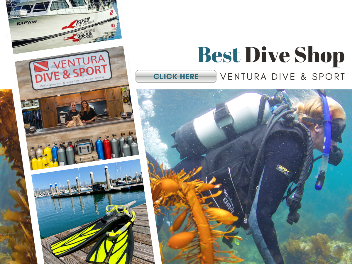 diver exploring under water and the dive shop entry