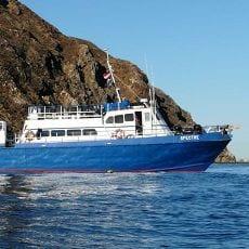 Spectre Dive Boat